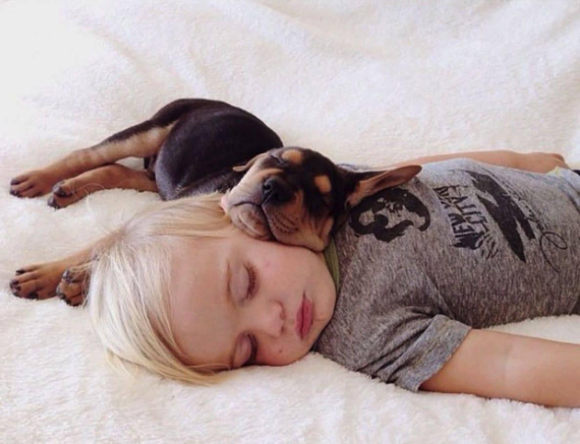 Фотографии пока она спит, Спящие жены без трусов (47 фото) 25 фотография