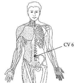 6 Self Acupressure Points To Relieve Back Pain Blue Tree Massage